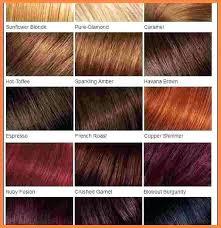 Copper Red Hair Color Chart Loreal Hicolor Copper Fotosporno Co