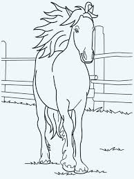 Horse Coloring Pictures 217 Related Post Marvelous Baby Horse