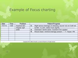 Documenting And Reporting Ppt Download