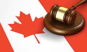 Finding An Ideal Canada Immigration Consultant to Meet Your Need -  Wingsglobalmigration