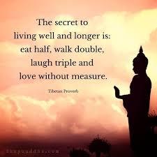 Professional Quotes New Zengardenamaozn Buddha Quotes Professional Zen Garden Quotes