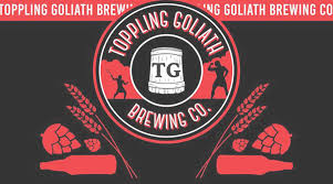 Toppling Goliath Light Speed Toppling Goliath Brewing Company Just Beer
