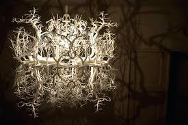 magnificent free chandelier that makes room a forest imposing chandelier turns room into a forest