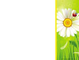 КУРСОВАЯ РАБОТА ПО ПЕРЕПОДГОТОВКЕ Экологическое воспитание в  МИНИСТЕРСТВО ОБРАЗОВАНИЯ И НАУКИ РФ ГБОУ ВПО САМАРСКАЯ ОБЛАСНАЯ АКАДЕМИЯ НАЯНОВОЙ КУРСОВАЯ