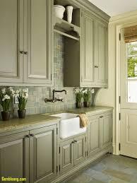 Beautiful Green Kitchen Cabinets Kitchenzocom