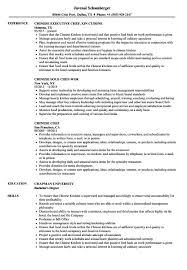 Chef Resume Chinese Chef Resume Samples Velvet Jobs Chef Resume Samples 4