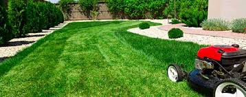 Image result for Lawn Care Services
