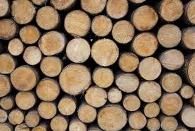 Best Firewood To Burn Chart Types Of Firewood A Simple Guide To Burning The Right Fuel