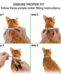 DEWEL™ Pro Guard Flea and Tick Collar for Cats - Buy Today 50% Off