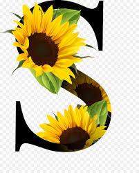 letra del alfabeto aceite de girasol