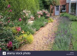 Small Picture Brick and Gravel Path borders with Lavender Rosa The Fairy rose