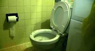 toilet backing up into bathtub bathtub backing up toilet and shower backed up toilet and bathtub