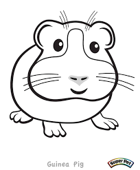 Small Picture Coloring Pages Of Guinea Pigs And Pig diaetme