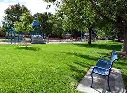 la palomita park where mike takes his granddaughter image by megan eaves lonely