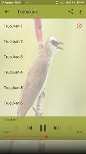 Full kicau trucukan nonstop 5 jam sangat cocok buat pancingan burung kesayangan anda mp3 duration 5:00:06 size. Suara Trucukan Ropel Special For Android Apk Download