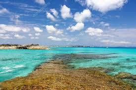 spain formentera island magnificent sea taken from the beautiful beach of es calò very por with celebrities of the show photo by
