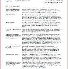 Summary On A Resume Examples Examples Of Resume Summary Elegant Custom Professional Summary On A Resume Examples