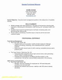 Hospitality Resume Example New Executive Director Resume