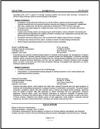 It Analyst Resumes Federal Financial Analyst Resume Sample The Resume Clinic