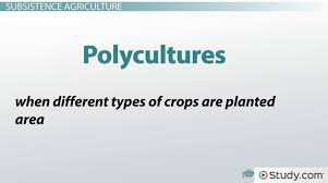Types Of Agriculture Industrialized And Subsistence Agriculture