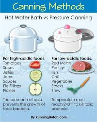 Food Preservation Chart Canninng Methods Chart Hot Water Bath Vs Pressure Canning