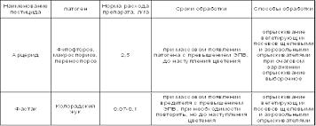 ЦЕНТРАЛЬНАЯ НАУЧНАЯ БИБЛИОТЕКА Курсовая работа Технология  Применение средств защиты картофеля на полях ОПХ Кочковское