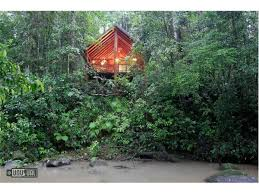 The Most Epic Treehouse In KentuckyThe Canopy Treehouses