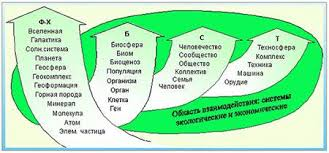 Реферат Экосистемы Структура и свойства законы и закономерности  Экосистемы Структура и свойства законы и закономерности