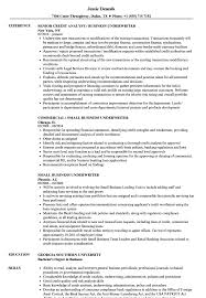 Underwriting Resume Examples Business Underwriter Resume Samples Velvet Jobs 24