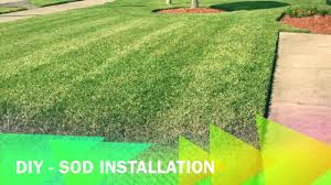 Diy Sod How To Lay Sod Grass Installation Diy Home Improvements 2017