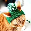 Как сделать шапочку для кошки