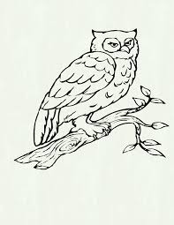 love bird coloring pages vitlt cool coloring pages