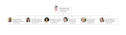 7 Types Of Organizational Structures Lucidchart Blog