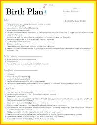 Natural Birth Plan Template Sample Birth Plan Template Birth Plan Worksheet A Birth Plan