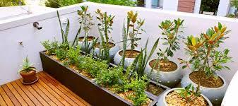 Small Picture Garden Design Garden Design with Be a balcony garden bandit Green