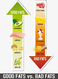 junk food vs healthy food chart. Fine Food Healthy Food And Junk Chart Food Clipart Vector Health PNG  Vector For Junk Vs Healthy Chart L