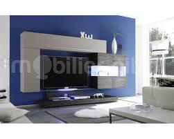 Meuble Tv Design Led Choix D Lectrom Nager