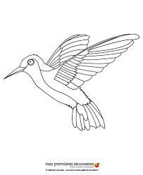 Small Picture Hummingbird coloring pages Hellokidscom
