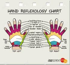 Hand Chart Hand Reflexology Chart Vector Illustration
