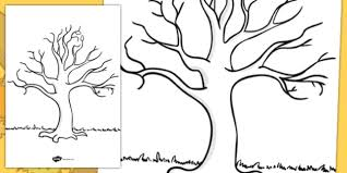 Template Tree Free Tree Template Ks1 Nature Drawing Resources