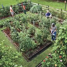 Small Picture Vegetable Garden Fence Ideas Japanese Garden Design