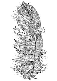 Feather Adult Adult Coloring Pages By