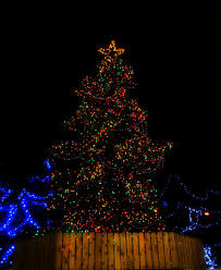 Christmas Tree Lighting Anchorage Christmas In Town Square Anchorage All The Trees In Anch