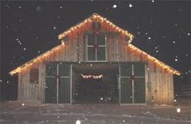 Here is our training barn decorated for Christmas | Favorite Things |  Pinterest | Horse barns, Barn and Holidays