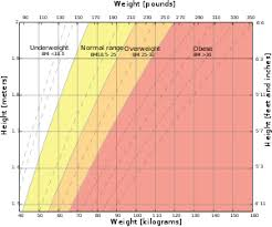 Prototypal When Was The Bmi Chart Invented Visual Bmi Chart