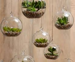Small Picture 25 Ways of Including Indoor Plants Into Your Homes Dcor