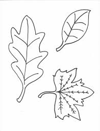 Small Picture Free Printable Pages Apple Fruits With Simple For Kids Apple Leaf