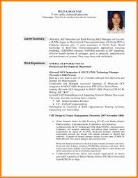 Professional Summary Resume Examples Inspirational Resume Career