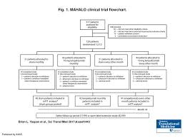 Phase 3 Clinical Trial Flow Chart Fig 1 Mahalo Clinical Trial Flowchart Ppt Download