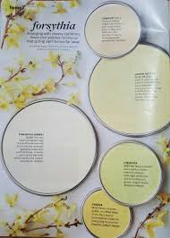 better homes and gardens paint. Forsythia -- Better Homes And Gardens Jan 2016 Paint L